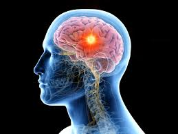 brain rosemary