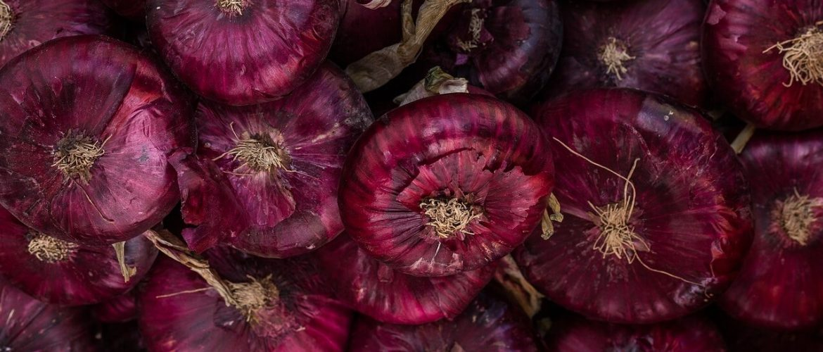 quercetin-red-onion-1170x500